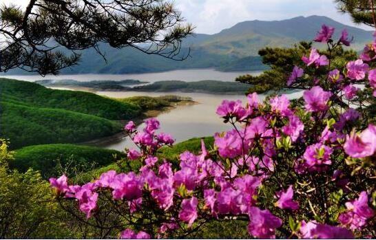 春到松花湖。 费光宇 摄