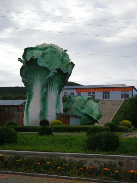金达莱村的大白菜巨型雕塑