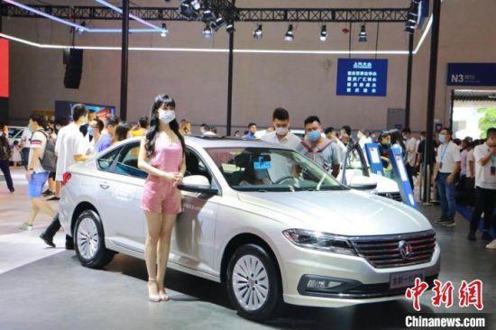 千余款中外车型亮相2020重庆国际车展。 陈媛 摄