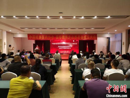 图为中国民族医药协会国际教育专业委员会成立仪式现场。 杜潇潇 摄
