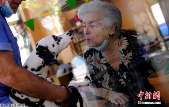 资料图:当地时间9月2日,西班牙巴塞罗那,一家养老院将老人推到玻璃窗前与前来探望的亲朋好友见面。图为一名老人隔窗亲吻宠物狗。