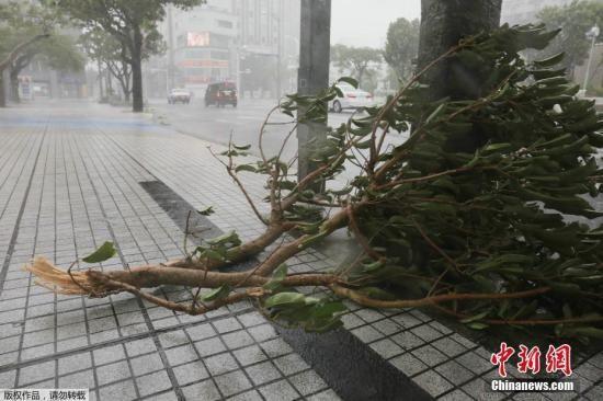 资料图:台风中的日本街道。
