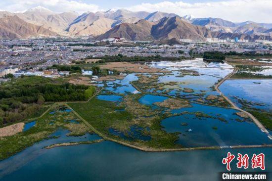 图为航拍拉萨拉鲁湿地的景色。(资料图) 何蓬磊 摄