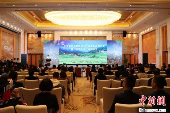 图为活动现场。金平县委宣传部供图