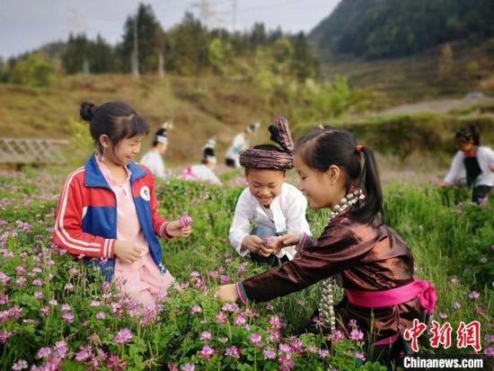 图为小歌队部分成员在户外做活动。受访者提供