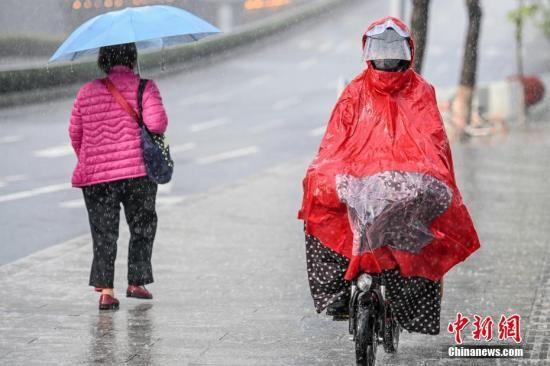 资料图:市民在雨中出行。中新社记者 陈骥�F 摄
