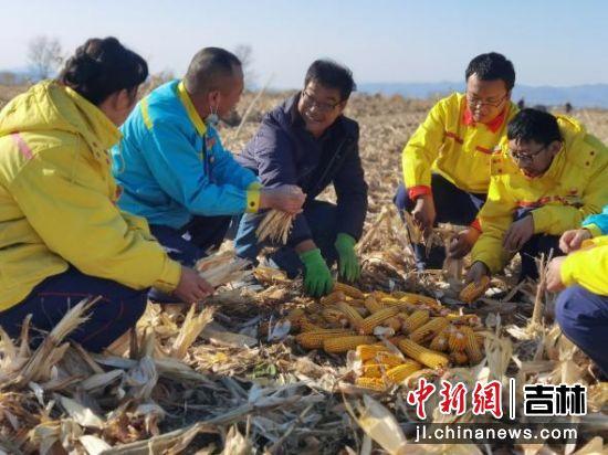加油站员工帮助附近村屯农民干农活儿。李丽 摄