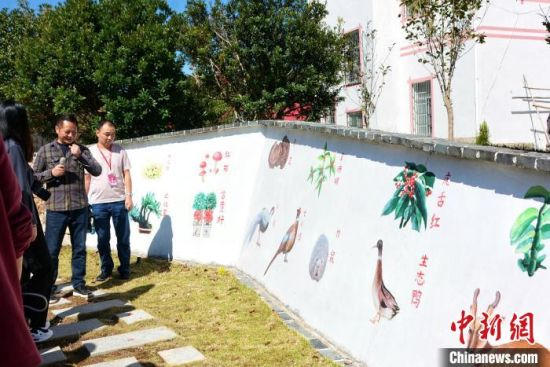捷文村里的林下经济彩绘墙。 龚雯 摄