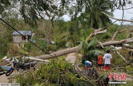 """飓风""""约塔""""袭击中美洲多地,图为飓风横扫哥伦比亚后,大量房屋和树木倒塌损毁。"""