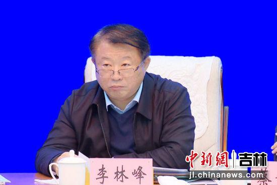 农安县长李林峰汇报了县政府党组工作开展情况
