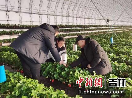 吉林省农业农村厅/供图