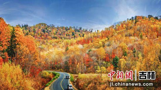 十月敦化寒葱岭上演浪漫秋季