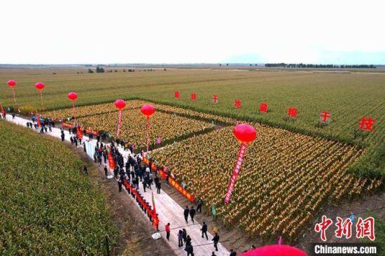 镇赉县农民庆祝丰收。 潘晟昱 摄