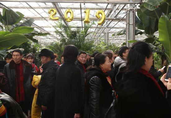 第十届吉林(长春)冬季农业博览会正式启幕